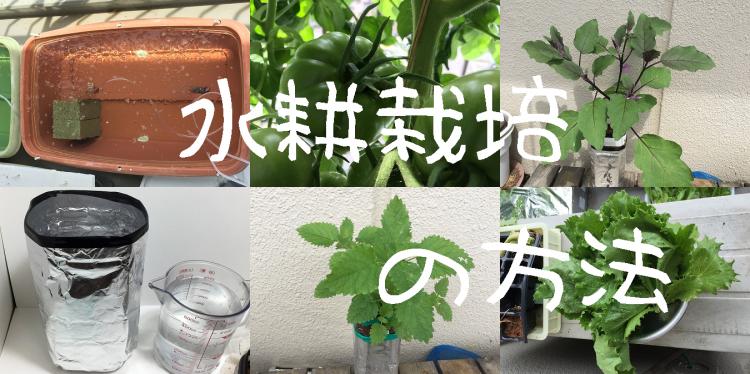 水耕栽培、方法、やり方、家庭菜園、水耕培養、 Hydroponic culture
