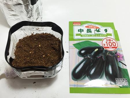 茄子 種まき ナス