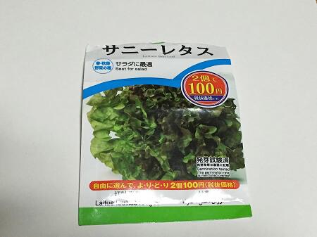 サニーレタス Red leaf lettuce 種まき