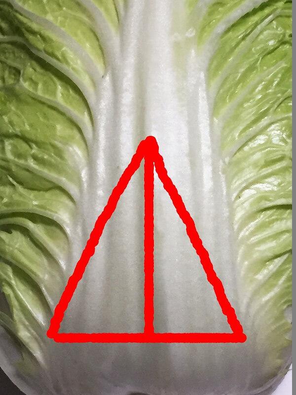 白菜 美味しい 見分け方