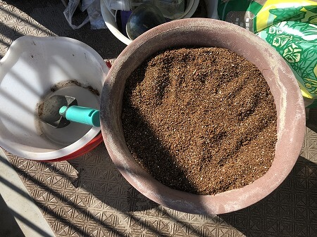 水耕栽培 土壌式水耕栽培  家庭菜園 土作り